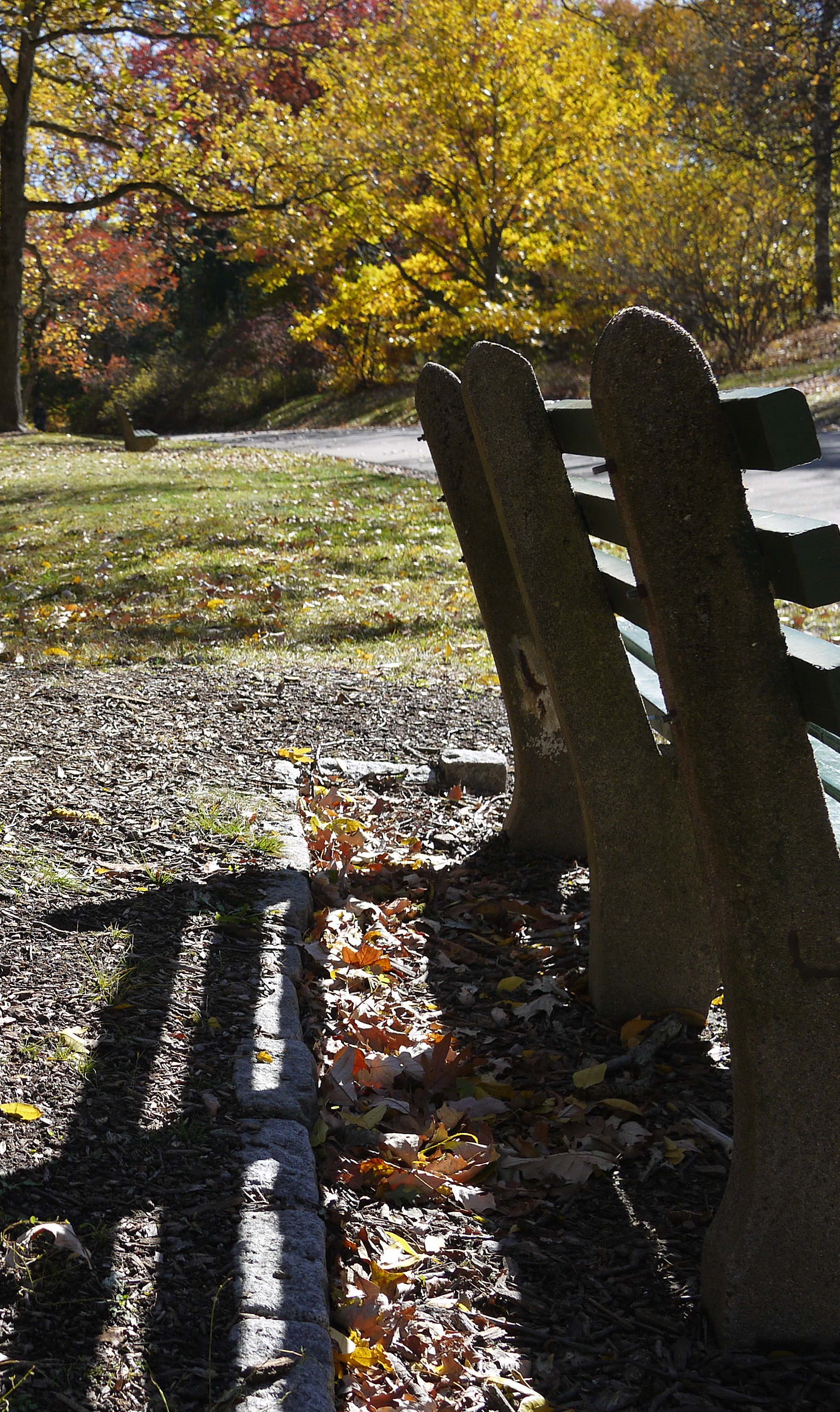 Park bench in sunshine